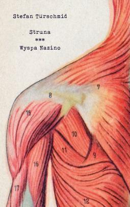 Okładka - Struna/Wyspa Nazino